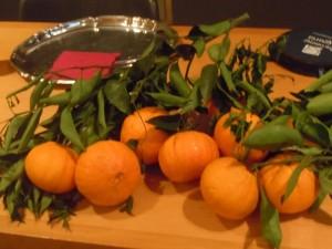 arance pernambuco